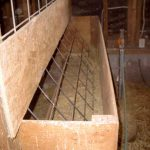 feeder-cattle-panel