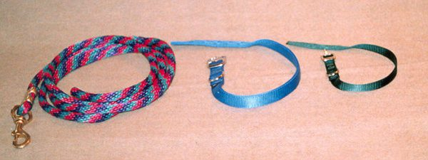 poly-lead-ropes-collars